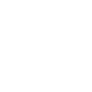 Bike Newport Logo white